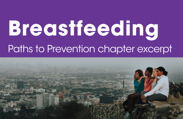 Breastfeeding Breast Cancer Risk Factor_Paths to Prevention chapter excerpt