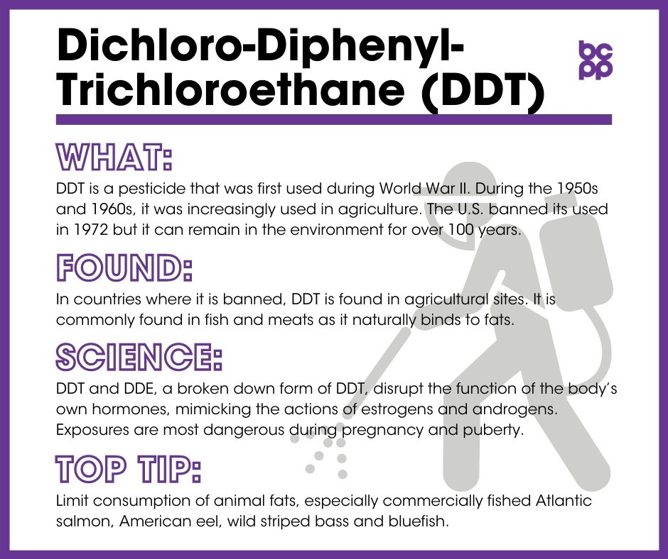 DDT breast cancer prevention tip card infographic