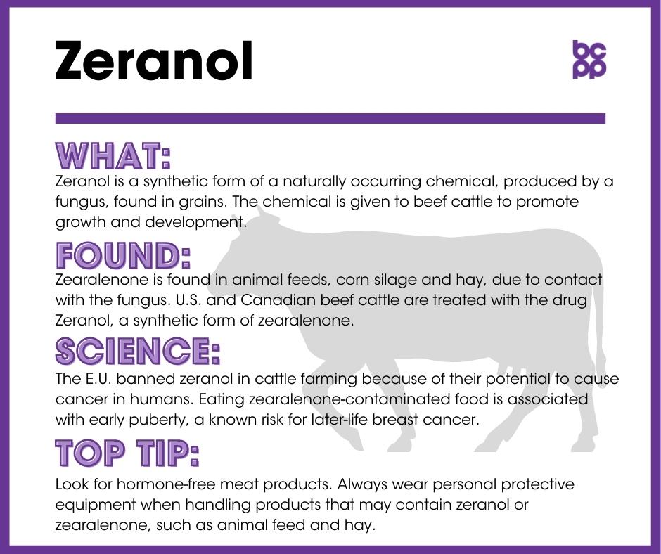 Zeranol breast cancer prevention tip card infographic